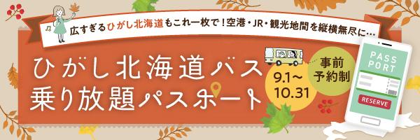 ひがし北海道バス2021 乗り放題パス バナー 日本語サイト サイズ(234×60)