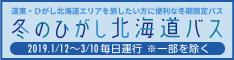 冬のひがし北海道観光バス バナー 日本語サイト サイズ(234×60)