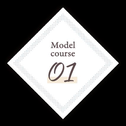 Model Course.01