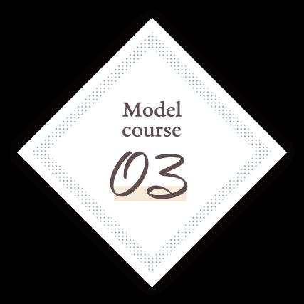 Model Course.03