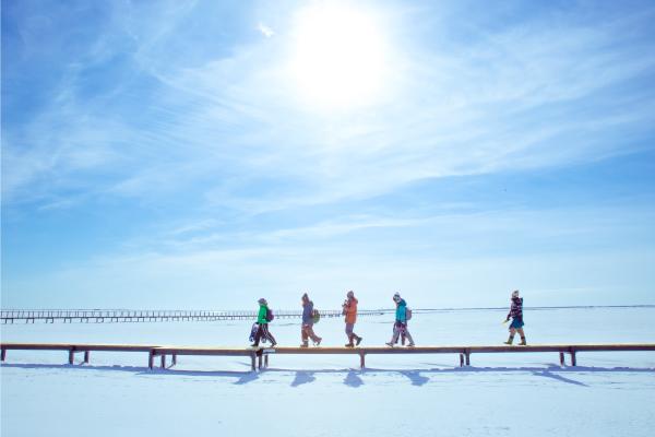 ひがし北海道エクスプレスバスで行く!まるで日本のウユニ塩湖!野付半島「氷平線」ウォークパック