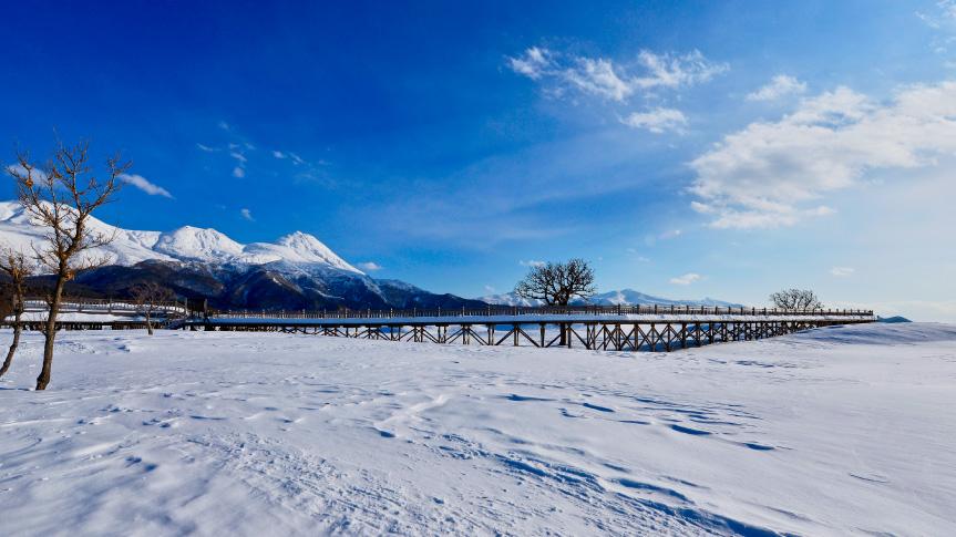 冬の知床五湖ウォーク