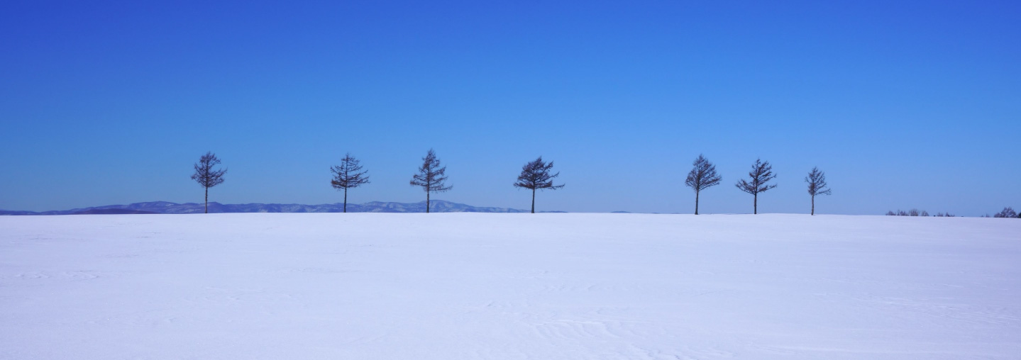 ウトロ→摩周→阿寒→北見・網走 9号