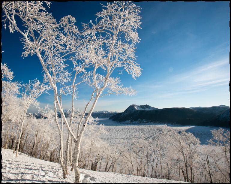 真冬の芸術「霧氷」に感動!摩周湖 霧氷ツアー