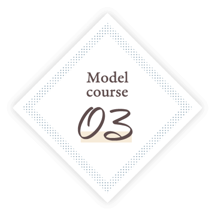 Model Course.03