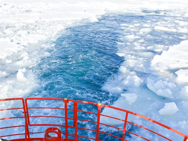 【札幌発】往復バス&流氷体験パック|流氷船ガリンコ号Ⅱと旭山動物園! 紋別1泊プラン