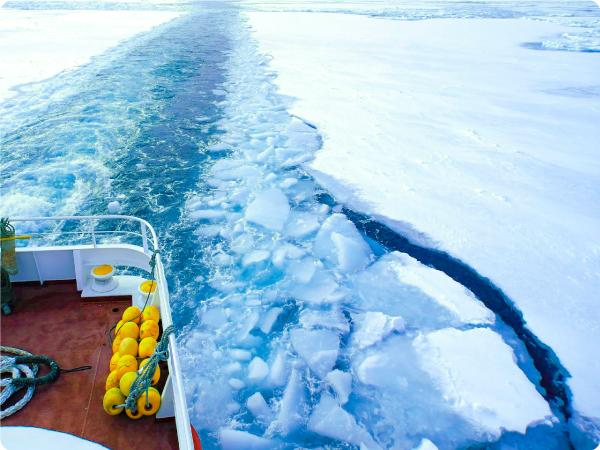 【札幌発】往復バス&流氷体験パック|流氷船ガリンコ号Ⅱと旭山動物園!網走1泊プラン