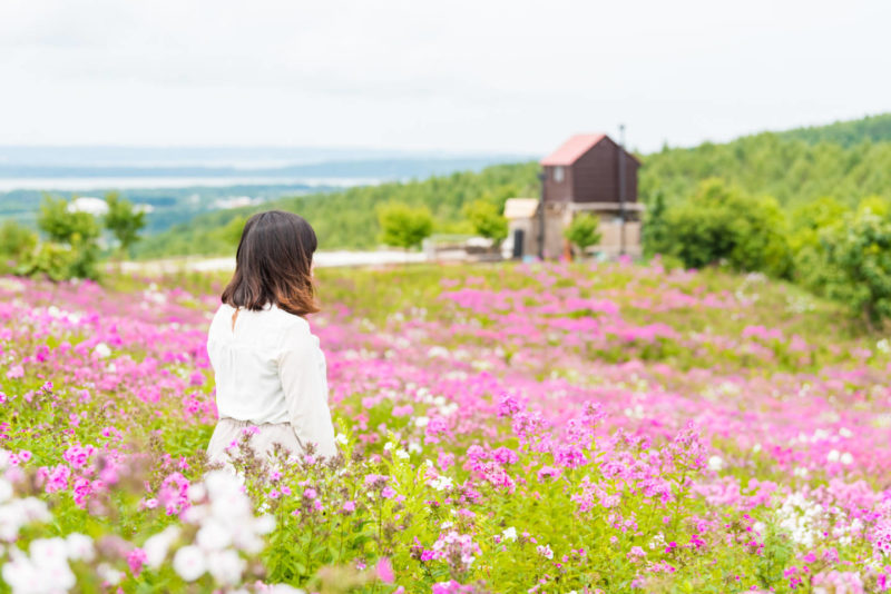 絶景と花に感動!網走の花スポットまとめ