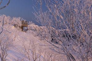 <北海道・摩周湖>霧氷ツアー ~早朝の摩周湖の絶景を見に行こう~