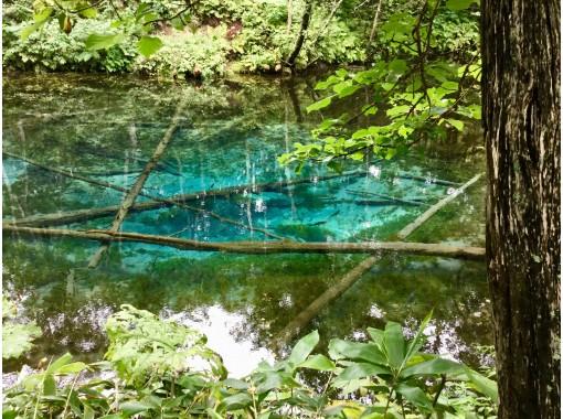 神の子池を撮ろう!!☆清里パノラマ周遊ツアー