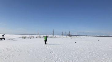 【日帰りプラン】ひがし北海道エクスプレスバスで行く!まるで日本のウユニ塩湖!野付半島「氷平線」ウォークパック(ウトロ発阿寒着)