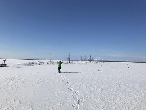 【日帰りプラン】ひがし北海道エクスプレスバスで行く!まるで日本のウユニ塩湖!野付半島「氷平線」ウォークパック(ウトロ発着)