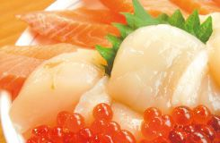 【札幌発日帰り】網走流氷バスツアー!おーろら号乗船&ズワイ蟹+ミニ海鮮丼ランチ付コース