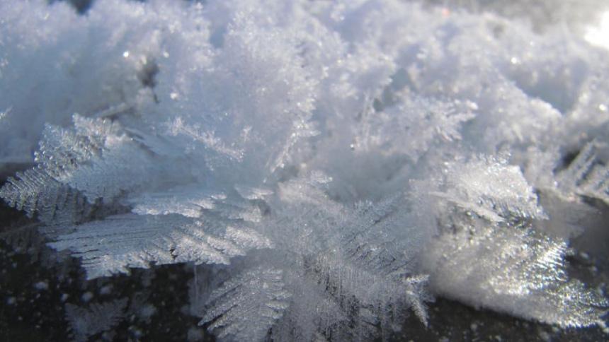 湖上に咲く可憐な氷の花 阿寒湖のフロストフラワー
