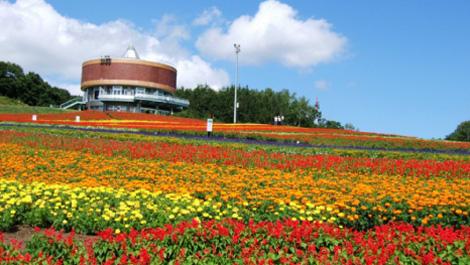 絶景と花に感動!網走の花スポットまとめ。