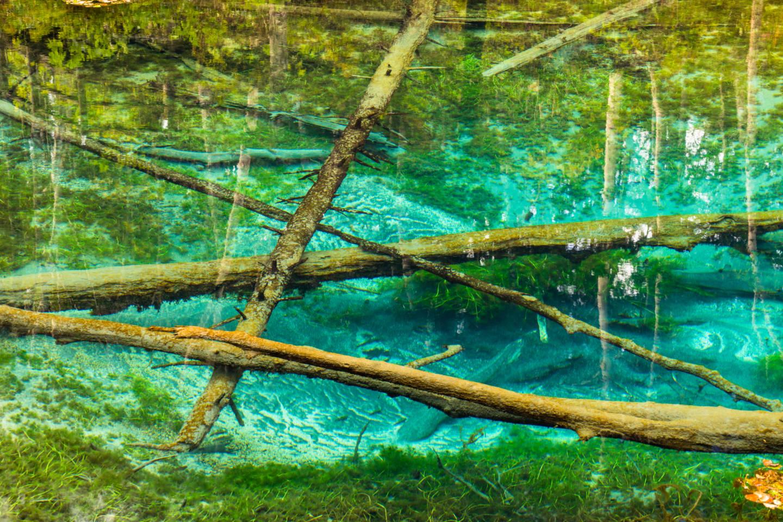 神の子池 ー 森に佇む神秘的なコバルトブルーの泉 清里町