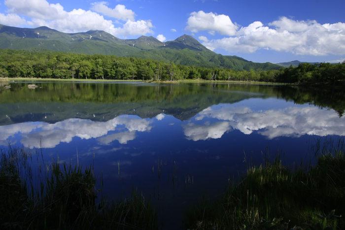知床自然体験1日コース~豊かな森をじっくり楽しむ~